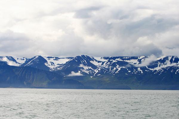 Island_2013_0075_klein